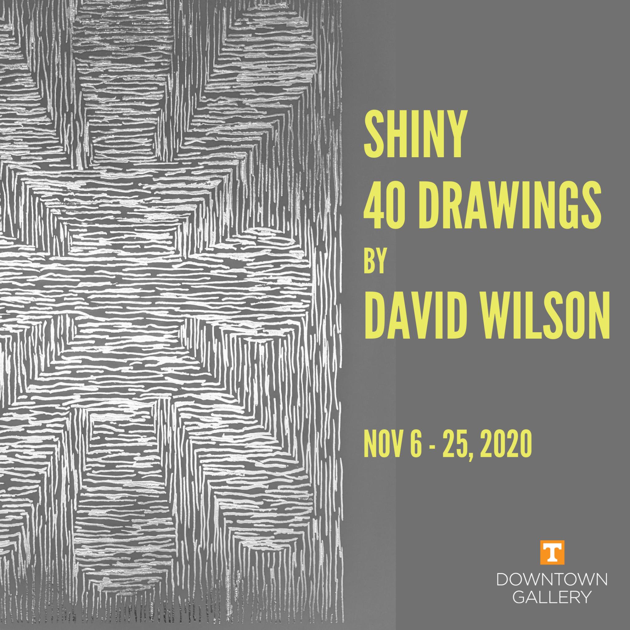 Shiny – 40 Drawings by David Wilson