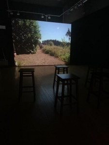 The Society at Black Pond - three films by Jessica Sarah Rinland
